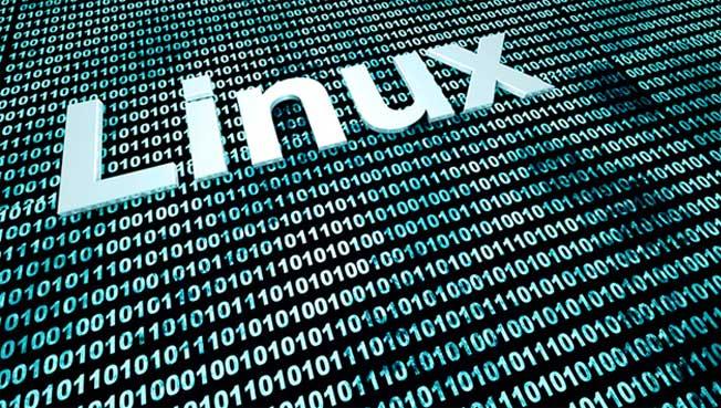 کاربرد PATH Environment Variable یا متغیر محیطی PATH در سیستم عامل لینوکس